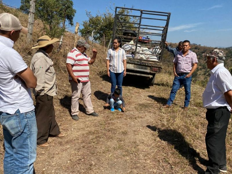 Rehabilitación del camino Saca-cosechas
